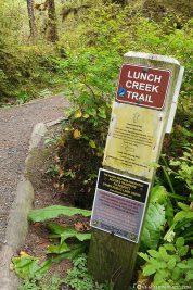 Der Lunch Creek Trail