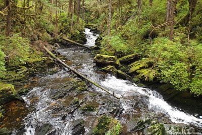 Der Lunch Creek