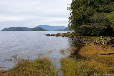 The Settlers Cove State Recreation Area