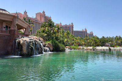 The Paradise Lagoon