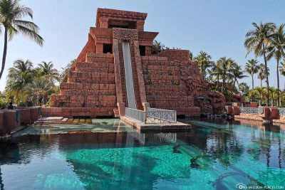 Mayan Temple Shark Lagoon