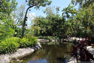 The beautiful park
