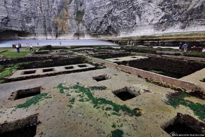 Remains of former oyster crops