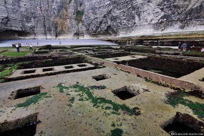 Überreste ehemaliger Austernkulturen