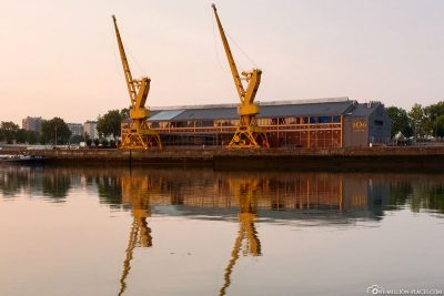 Cranes at the harbour