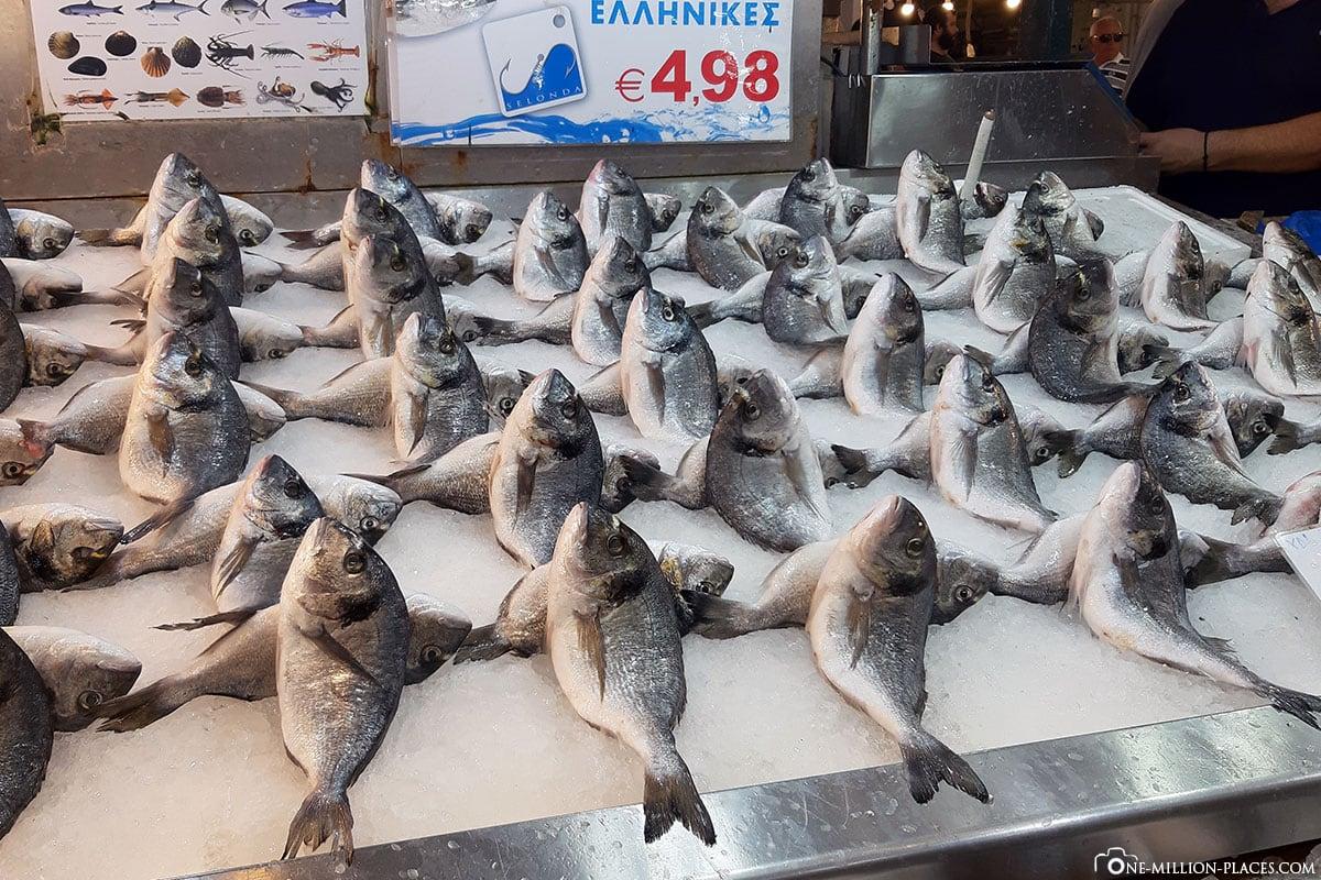Fische, Markthalle Athen, Griechenland, Sehenswürdigkeiten, Reisebericht, Fotospot