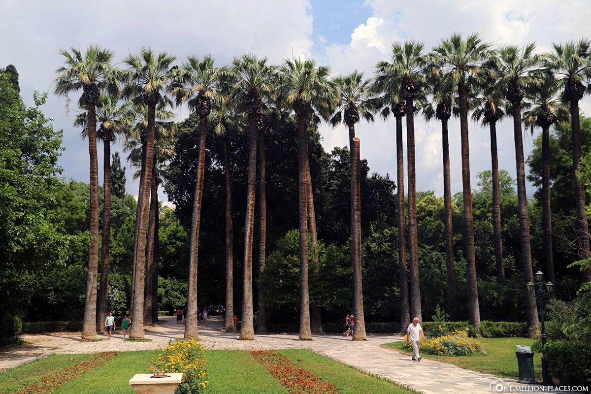 Palmen, Nationalgarten, Athen, Griechenland, Sehenswürdigkeiten, Auf eigene Faust, Reisebericht, Fotospot