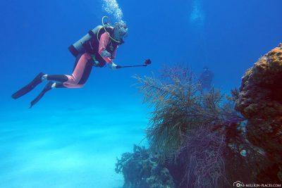 The dive site Barracuda Heads