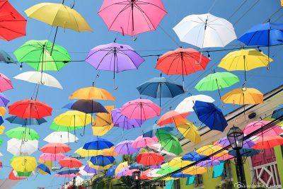 Die bunten Regenschirme in Nassau