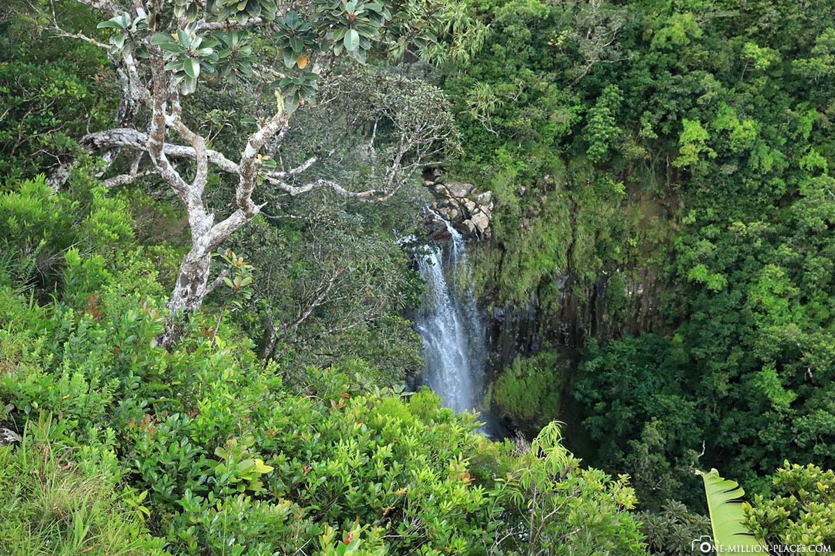 Alexandra Waterfalls, Mauritius, Back River Gorges NP, Travelreport