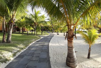 The main path on the beach