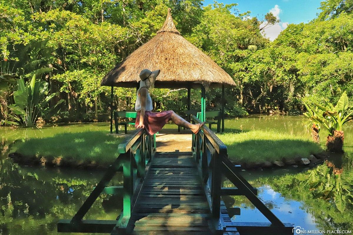 Grand Bassin, Pavillon, Mauritius, Botanischer Garten