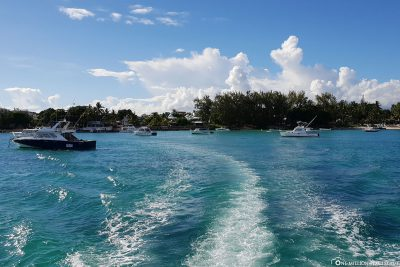 Tauchen mit Pro Dive Mauritius