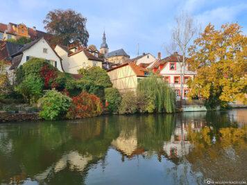 The Regnitz in Bamberg