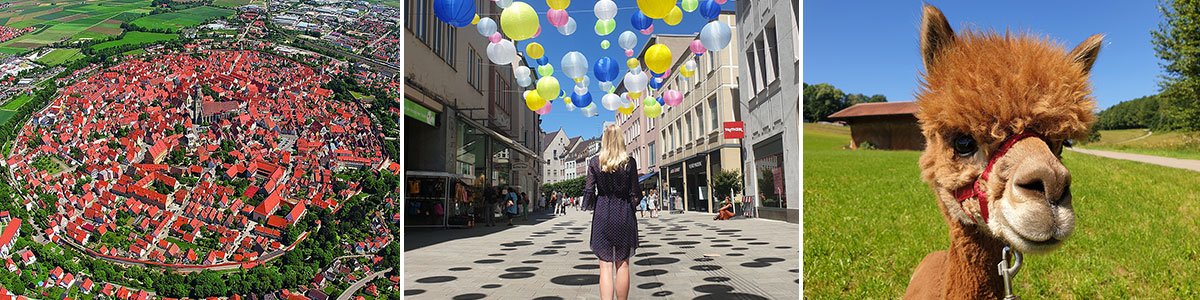 Bavarian-Schwaben header image