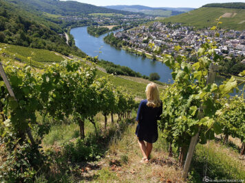 View from the vineyards over the Moselle Valley
