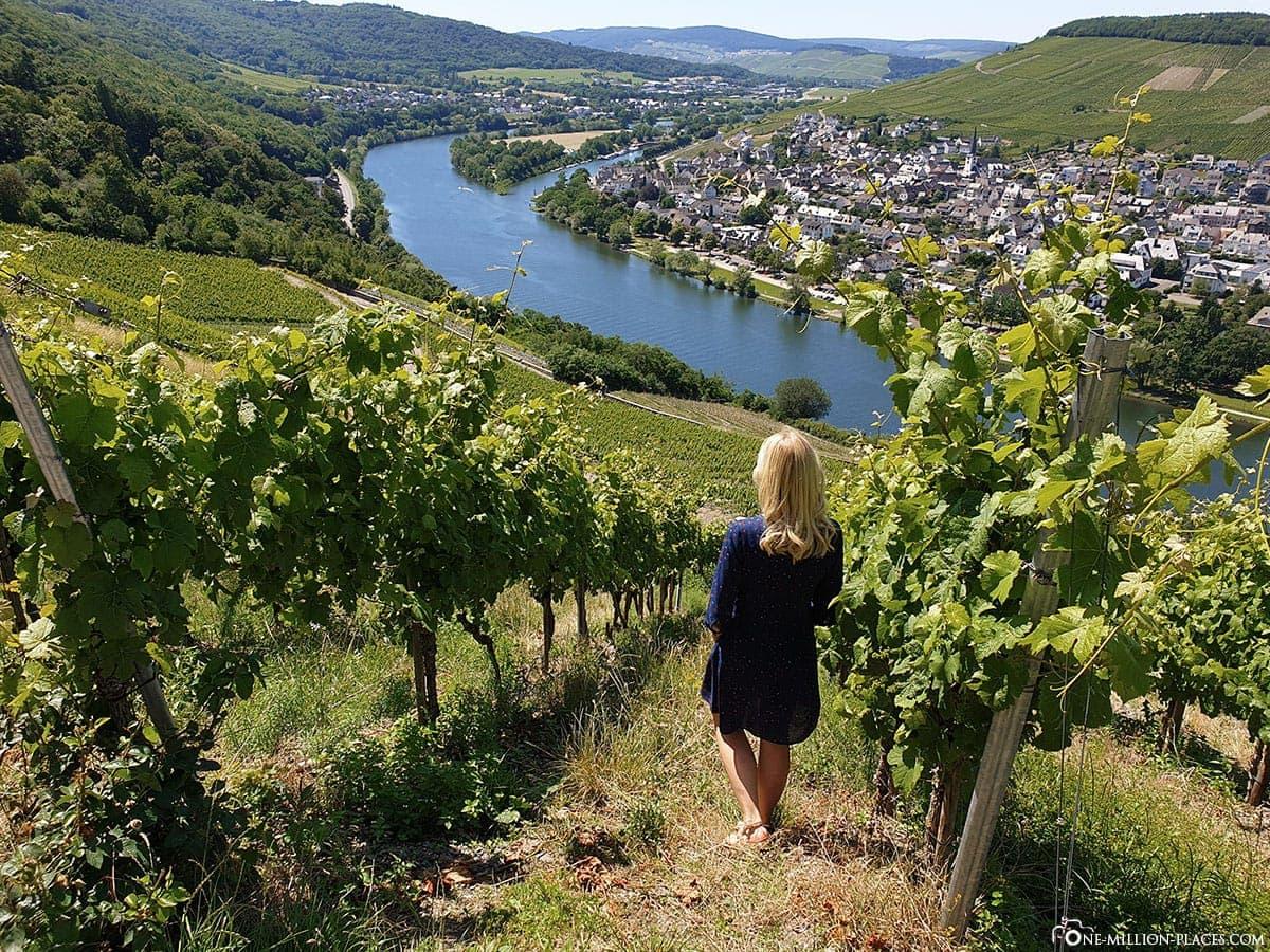 Moseltal, Weinberge, Bernkastel-Kues, Rheinland-Pfalz, Deutschland, Reisebericht
