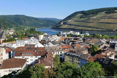 View from the castle to the Rhine
