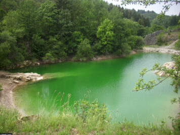 This is how beautiful the lake can look in summer