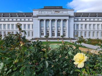 Das Kurfürstliche Schloss