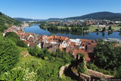View of Miltenberg and the Main