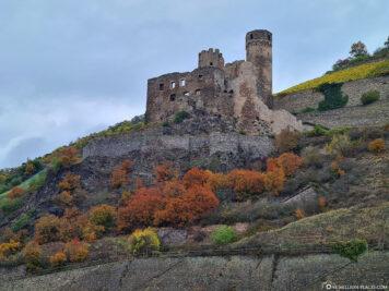 Die Ruine Burg Ehrenfels
