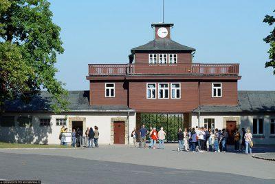 Gate building with arrest cells