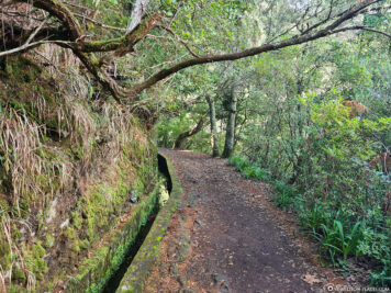 Spaziergang entlang der Levada