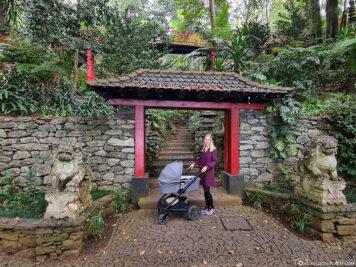 Der tropische Garten Monte Palace