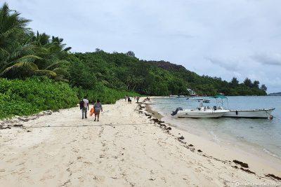 Der Strand von Cerf Island
