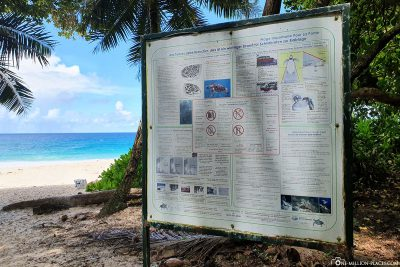Information board about the turtles on the beach