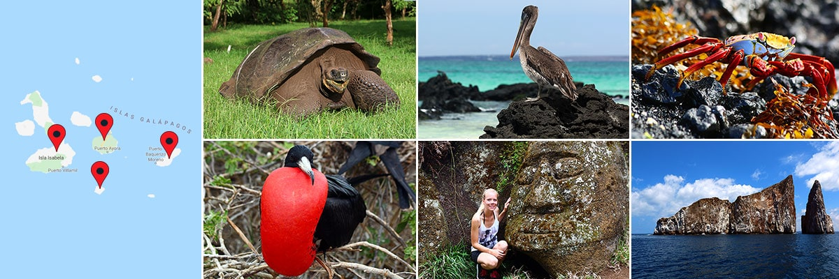 Reiseberichte Galapagos-Inseln